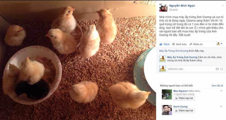 Khách hàng đánh giá Máy ấp trứng gà Ánh Dương - Ảnh 10